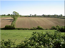 ST6759 : Valley between Wall Mead and Northfield by Neil Owen