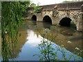 SU9043 : Elstead Bridge : Week 24