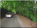 ST0534 : Fine example of a Brendon Hills 'hedge tunnel' by Stephen Wilks
