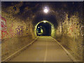 NT2169 : Inside Colinton Tunnel : Week 24
