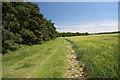TL6360 : Bridleway to Court Barns Farm by Bob Jones