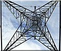 NT1693 : Electric star : Week 26