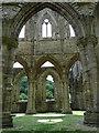 SO5300 : Tintern Abbey : Week 26