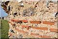 TG4704 : Roman Tiles by Ashley Dace
