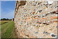 TG4704 : Roman Walls at Burgh Castle by Ashley Dace
