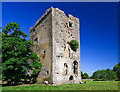 M4437 : Castles of Connacht: Derrymaclaughna, Galway by Mike Searle