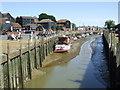 TQ9120 : River Tillingham at Rye : Week 28