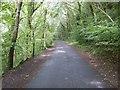 SX5259 : Plym Valley Trail by shirokazan