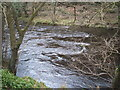 SK2379 : River Derwent in winter by Peter Barr
