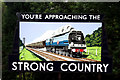 SU7239 : Alton Station:  'Strong Country' poster : Week 27