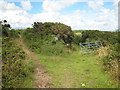 SW7331 : Junction of bridleway and track near Mean Pern by Rod Allday