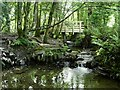 SW7350 : Footbridge near entrance to Jericho Cottage by Gary Rogers