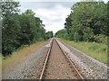 SJ4870 : The Mid-Cheshire Railway Line by David Quinn