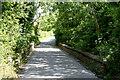 ST6260 : 2010 : Railway bridge on King Lane by Maurice Pullin