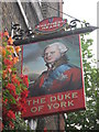 TQ3179 : Duke of York Pub Sign by David Anstiss
