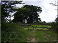 TM4067 : Field Entrance off Littlemoor Road by Adrian Cable