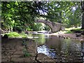 NY9763 : Lord's Bridge over Devil's Water, Dilston by Andrew Curtis