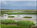 SZ8795 : Church Norton salt-marsh by Chris Gunns