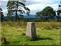 NS4884 : Aucheneck trig point by Lairich Rig