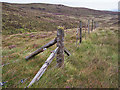 NG3651 : Fence on the moor by Richard Dorrell