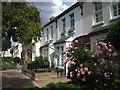 TQ2375 : Olivette St, Putney, London : Week 36