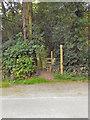 SJ5357 : Stile, Stone House Lane, Peckforton by David Dixon