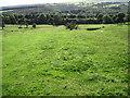 SE2900 : Footpath across Mill Moor by Chris Wimbush