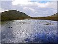 NN4660 : Moorland Lochan : Week 37