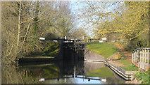 SU5666 : Below Heales Lock by Mike Todd