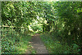 SX5353 : Plymouth: Sustrans cycle path by Martin Bodman