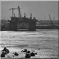 NZ3566 : Tyne Dock : Week 38