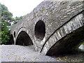 SN2641 : Cenarth Bridge : Week 38