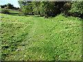 SJ9581 : Footpath towards Shrigley Road by Chris Wimbush