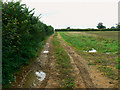 ST9193 : A view west along The Monarch's Way, Long Newnton by Brian Robert Marshall