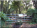 SW5236 : Gateway at Higher Hill Wood by Rod Allday