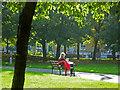 TQ3283 : Rosemary Gardens : Week 40