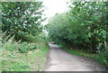 TQ2377 : The Thames Path by N Chadwick