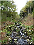 SH8317 : Upstream on the Nant y Graig-wen by Richard Law