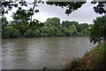 TQ1877 : River Thames at Kew by N Chadwick