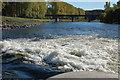 NT6032 : Mertoun Bridge from the cauld : Week 42