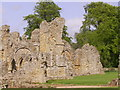 TQ6536 : Bayham Old Abbey, East Sussex by nick macneill