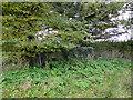 TM5082 : Pillbox in Wrentham by Adrian S Pye