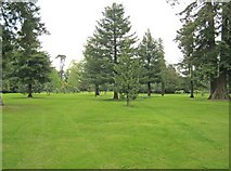 ST9770 : Bowood Pinetum by Trevor Rickard