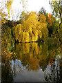 SU9608 : Slindon Pond : Week 44