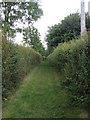TL6859 : Footpath from Saxon Street by Hugh Venables