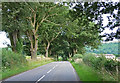SO3681 : Country road near Little Brampton by Stephen Richards