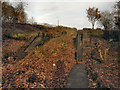 SD7506 : Nob End Locks by David Dixon