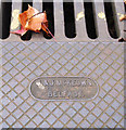 J3271 : Rodding access cover, Belfast by Rossographer