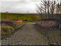 SD7506 : Manchester, Bolton & Bury Canal; Bridge 14 At Nob End by David Dixon