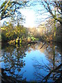 SW7629 : Pond at Tregarne Mill by Rod Allday